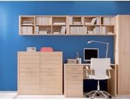 Письменные столы Сети